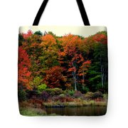 Hidden Valley Lake Tote Bag