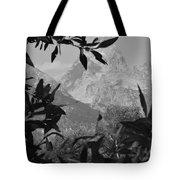 Hidden View Bw Tote Bag