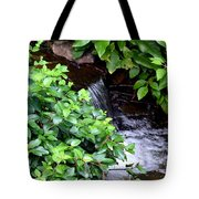 Hidden Waterfall Tote Bag