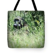 Hiding In Tall Grass Tote Bag
