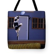 High Flying Catch Tote Bag