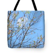 High Point Moon Tote Bag
