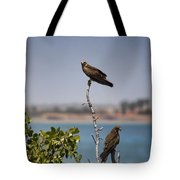 Higher Up The Tree Tote Bag