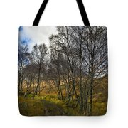 Highland Highway Tote Bag by Gary Eason