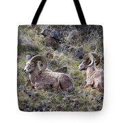 Hillside Rams Tote Bag