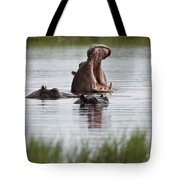 Hippo In Water Exhibits Aggresive Tote Bag