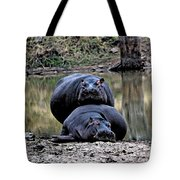 Hippos In Love Tote Bag