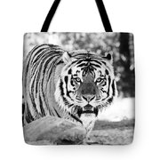 His Majesty Tote Bag by Scott Pellegrin