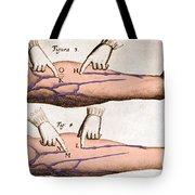 Historical Illustration Of Blood Vessels Tote Bag