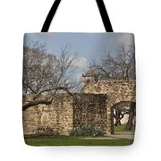 History Awaits Tote Bag