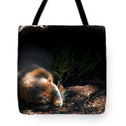 Hit The Otter Snooze Tote Bag