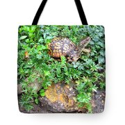 Hitchin A Ride On A Turtle  Tote Bag
