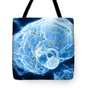 Hiv-1 Infected T4 Lymphocyte Sem Tote Bag by Science Source