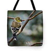 Ho Hum Bird In An Ice Storm Tote Bag