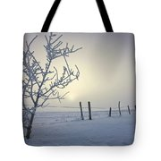 Hoar Frost Covering Trees And Barbed Tote Bag