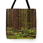 Hoh Rainforest Tote Bag