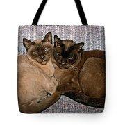 Hold A True Friend Tote Bag