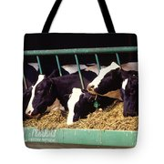 Holstein Dairy Cows Tote Bag by Photo Researchers