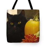 Black Cat And Pumpkin Tote Bag