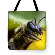 Honey Bee 2 Tote Bag
