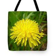 Honey Bee Full Of Pollen Tote Bag by Renee Trenholm