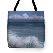 Honokohau Aloalo Aheahe D T Fleming Beach Maui Hawaii Tote Bag