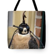 Hooded Barbary Falcon Tote Bag
