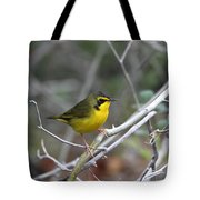 Hooded Warbler Tote Bag