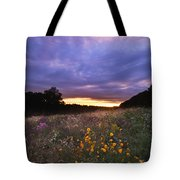Hoosier Sunset - D007743 Tote Bag
