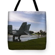Hornet And Gooney After The Storm Tote Bag