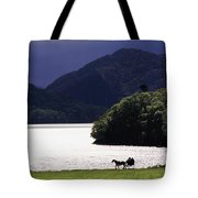 Horse And Buggy By Waterfront Tote Bag