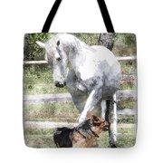 Horse And Dog Play Tote Bag
