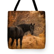 Horse And The Haystack Tote Bag