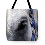 Horse At Mule Day Benson Tote Bag