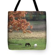 Horse Barn Hill Pasture Tote Bag