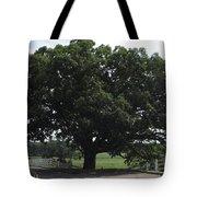 Horse Barn Hill Uconn  Tote Bag