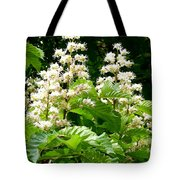 Horse Chestnut Blossoms Tote Bag