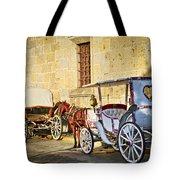 Horse Drawn Carriages In Guadalajara Tote Bag