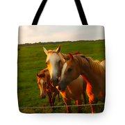Horse Family Soft N Sweet Tote Bag