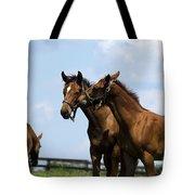 Horse Foul Play Vi Tote Bag