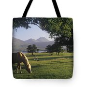 Horse Grazing On A Landscape Tote Bag