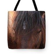 Horse Hair 2 Tote Bag