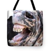 Horse Humor Tote Bag