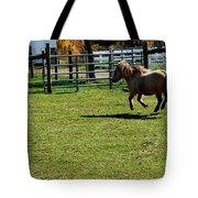 Horse Jump Tote Bag