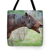 Horse Laugh Tote Bag