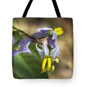 Horse Nettle Nightshade - Solanum Carolinense Tote Bag