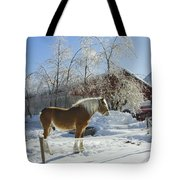 Horse On Maine Farm After Snow And Ice Storm Tote Bag