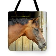 Horse Portrail Tote Bag