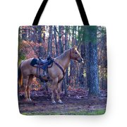 Horse Waiting For Rider Tote Bag