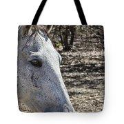 Horse With No Name V3 Tote Bag